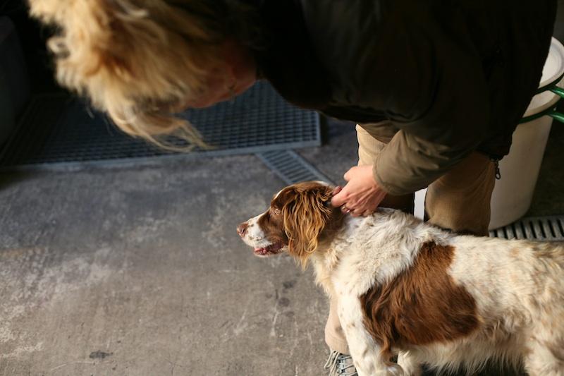 Mas Coris - Véronique Attard et son chien