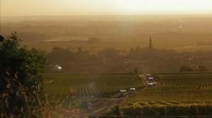A Year in Burgundy - Une armée de vendangeurs
