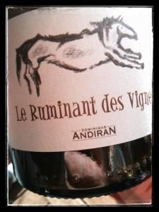 Le Ruminant des Vignes - Domaine Haut-Campagnau - Domnique Andiran - Côtes de Gascogne