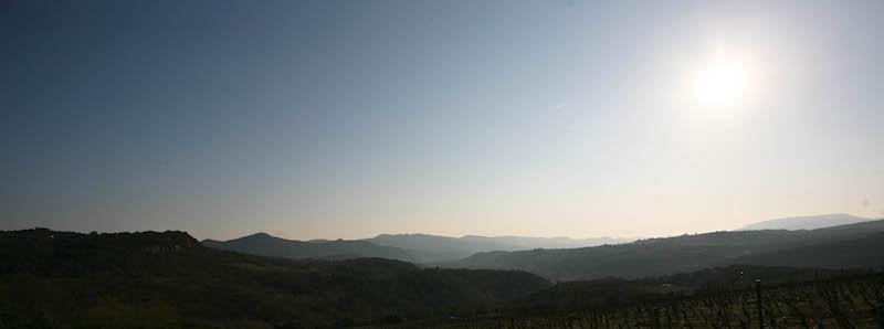 Domaine de Pélissols blanc - Vue de la Vallée de l'Orb - Haut-Languedoc