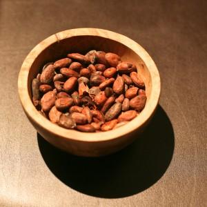 Chocolat : Fèves de cacaoyer torréfiées