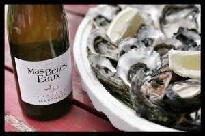 """Cuvée """"Les Coteaux"""" Languedoc blanc 2013 et plateau d'huîtres, Mas Belles Eaux, Caux, Languedoc"""