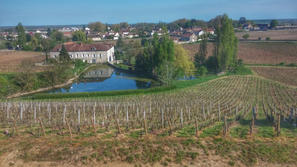 Vue de Vougeot depuis Chambolle premier cru Amoureuses