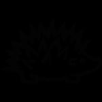 Roumégaïre