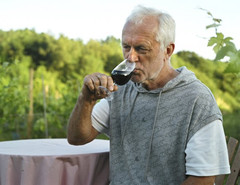 Roy Cook Sedlescombe vin anglais bio