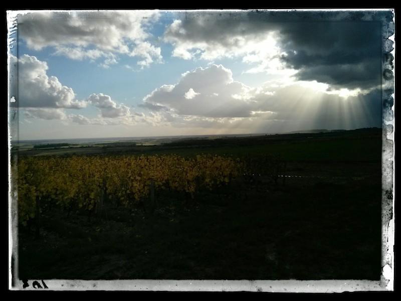 Nuage menaçant et rayon de soleil sur les vignes